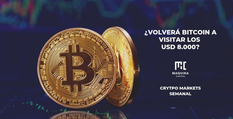 Volvera Bitcoin a visitar los 8000