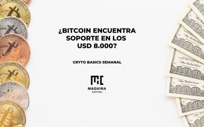 Bitcoin encuentra soporte en los 8000